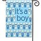 It's A Boy Garden Flag