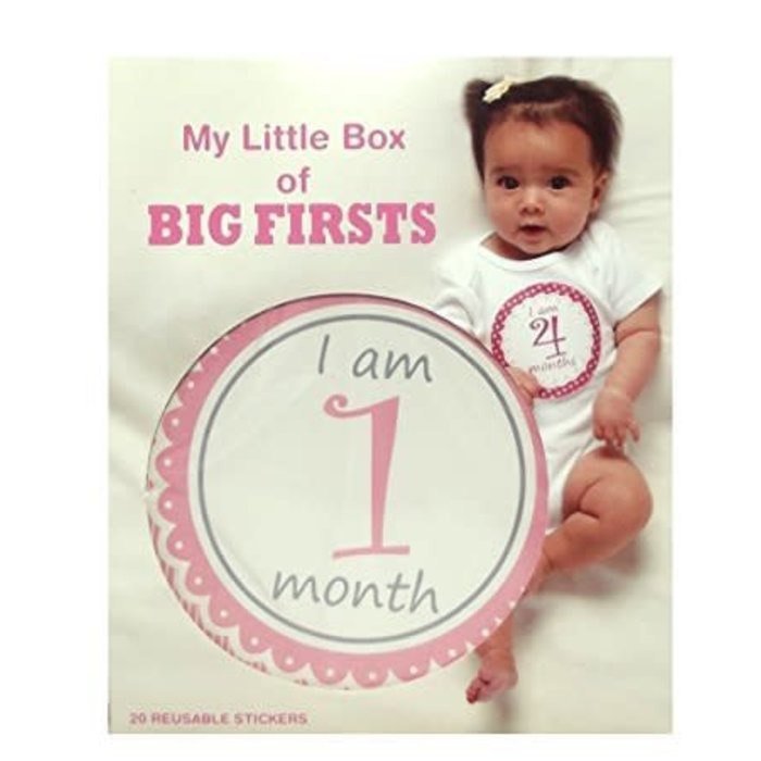 Girls Big Firsts Stickers