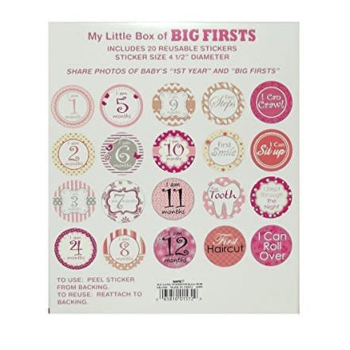 Girls Big Firsts Stickers