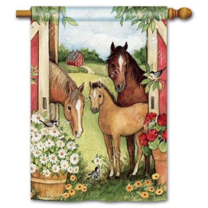 Springtime on the Farm Standard Flag