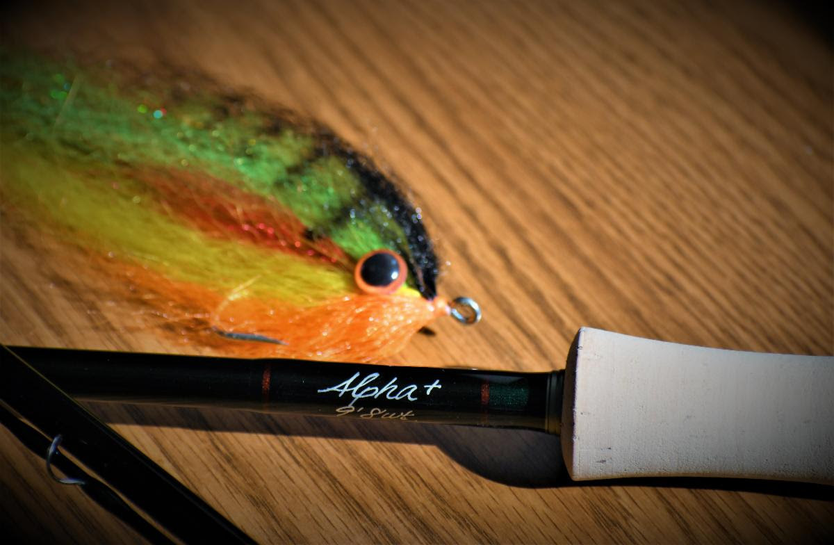 New Winston Fly Rods for 2020