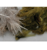 Hungarian Partridge Feathers Bulk