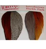 Whiting Hackle Farms Whiting Introductory Hackle Pack