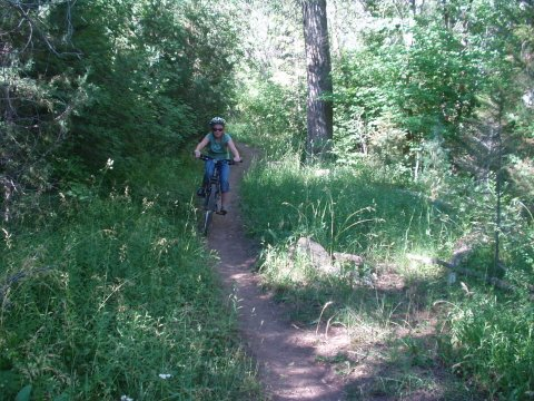 Trail Review: Wadsworth Trail - Hobble Creek Canyon