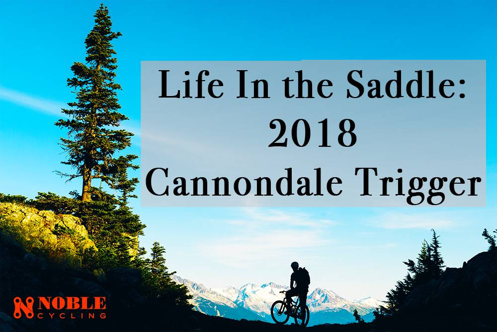 Life in the Saddle: The All & All  2018 Trigger