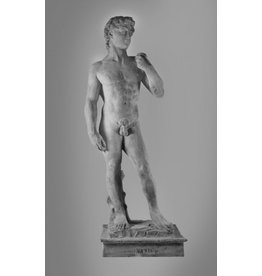 Just Sculpt David Sculpture 97''