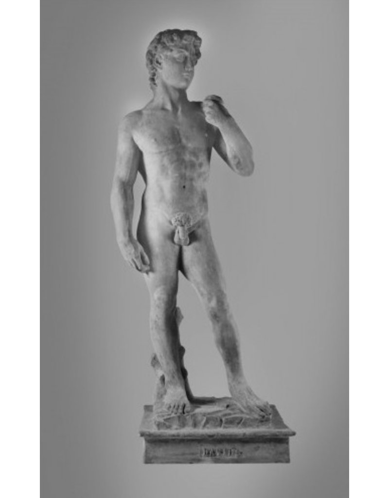 Just Sculpt David Sculpture 97''