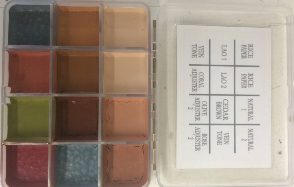PPI On Set Skin Illustrator Fleshtone Palette