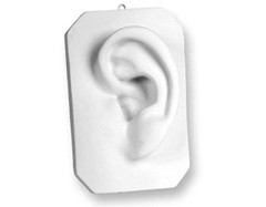 Just Sculpt Plaster Ear Of David