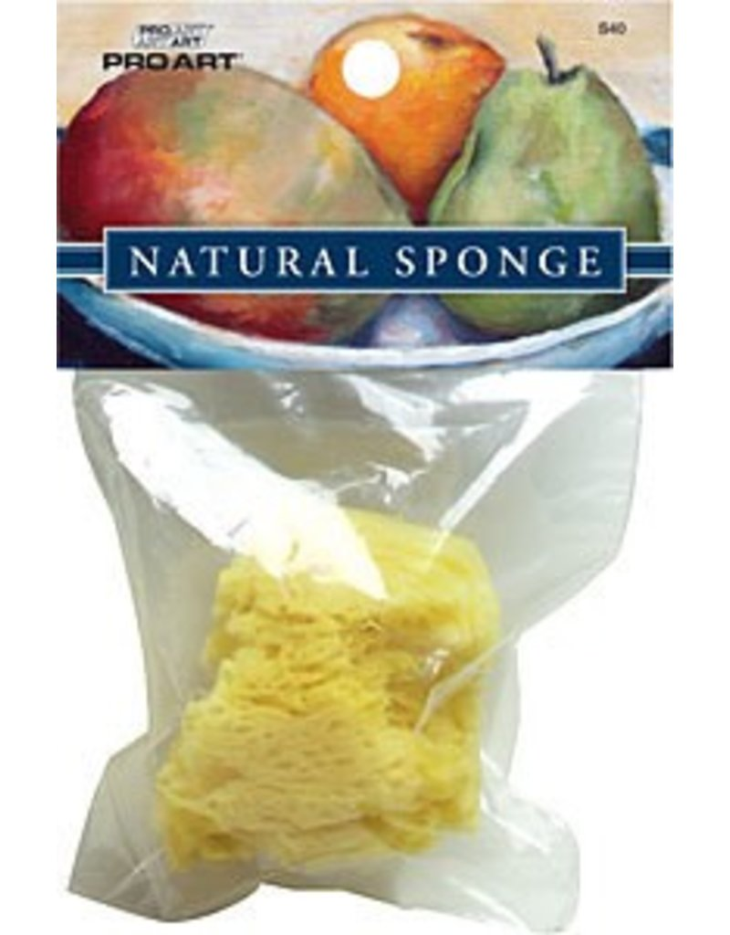 Just Sculpt Sea Silk Sponge Set