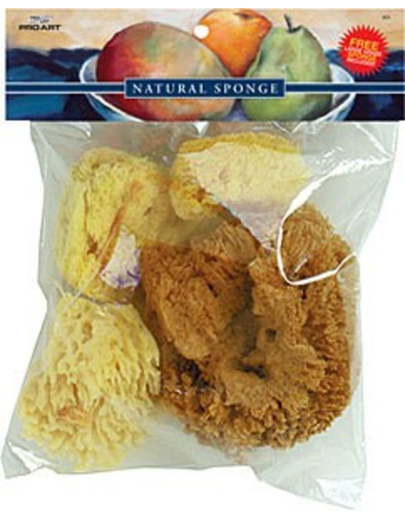 Just Sculpt Silk, Wool, & Grass Sponges Combo Set Natural