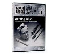 Adam Beene Working in CX5 DVD