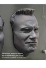 Anatomy tools Anatomy Tools Male Facial Expression Sheet