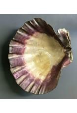 Gold Chrome Shell