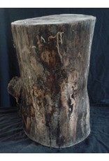 "Wood Hard Maple Log 9""Dx17""H 25lbs #15343"