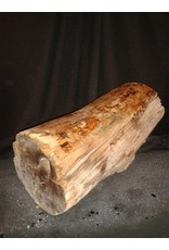 "Wood Spalted Maple Log 8""Dx20""H 26lbs #15353"