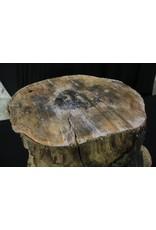 Wood Maple Burl 12x16x17 #30003