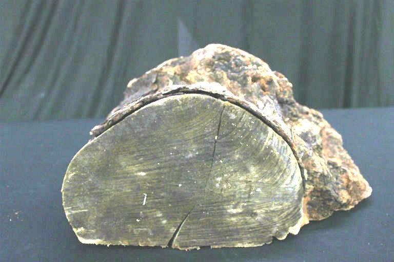 Wood Cherry Burl 18x14x10 #30025