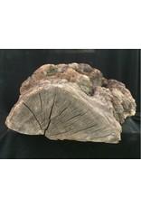 Wood Cherry Burl 18X19X8 #051003