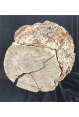 Wood Cherry Burl 19X17X11 #051002