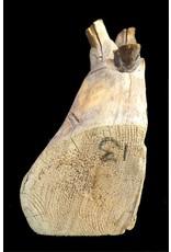 Wood Alaskan Cedar 41x7x6 #031002