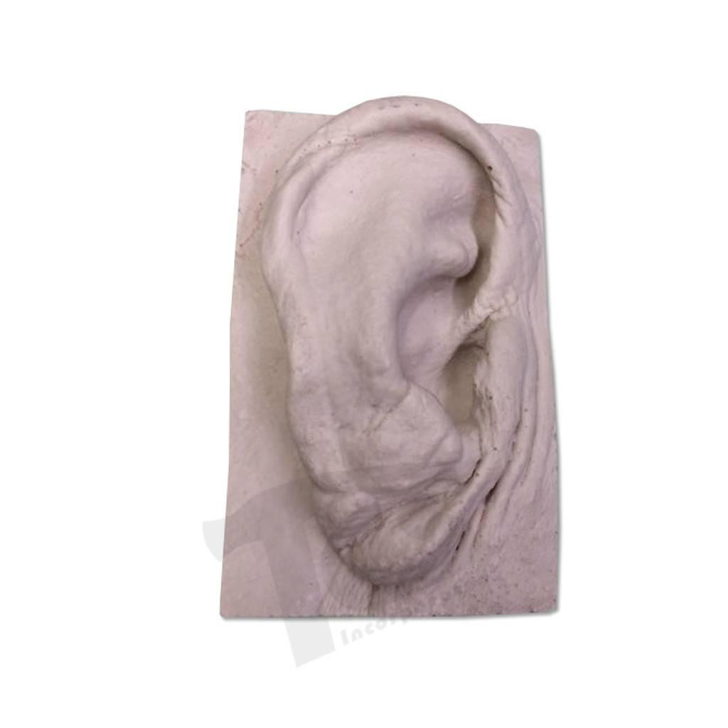 Just Sculpt Resin Ear #2 (Elderly)
