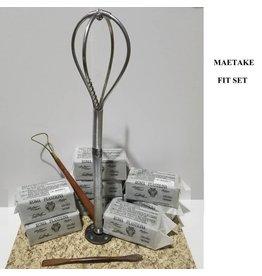Maetake FIT Class Set