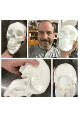 Sculpture House Second Quality Plaster Skull (Human)