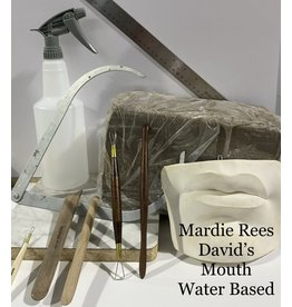 Just Sculpt Mardie Rees David Mouth Sculpting Kit - Water Based
