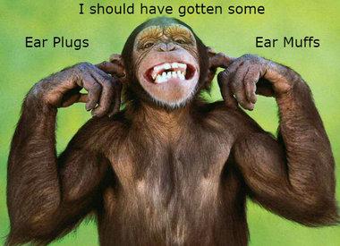 Muffs & Plugs