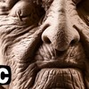 Stan Winston How To Sculpt A Character Makeup Fuller DVD