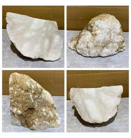 Stone 12lb Mario's White Translucent Alabaster 8x6x5 #101144