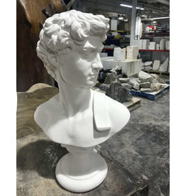 Just Sculpt David Plaster Bust