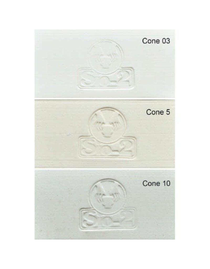 SIO-2 PRAI White Stoneware Clay 27.6lb Cone 6-10