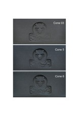 SIO-2 PRNI Black Stoneware Clay 27.6lb Cone 6-10