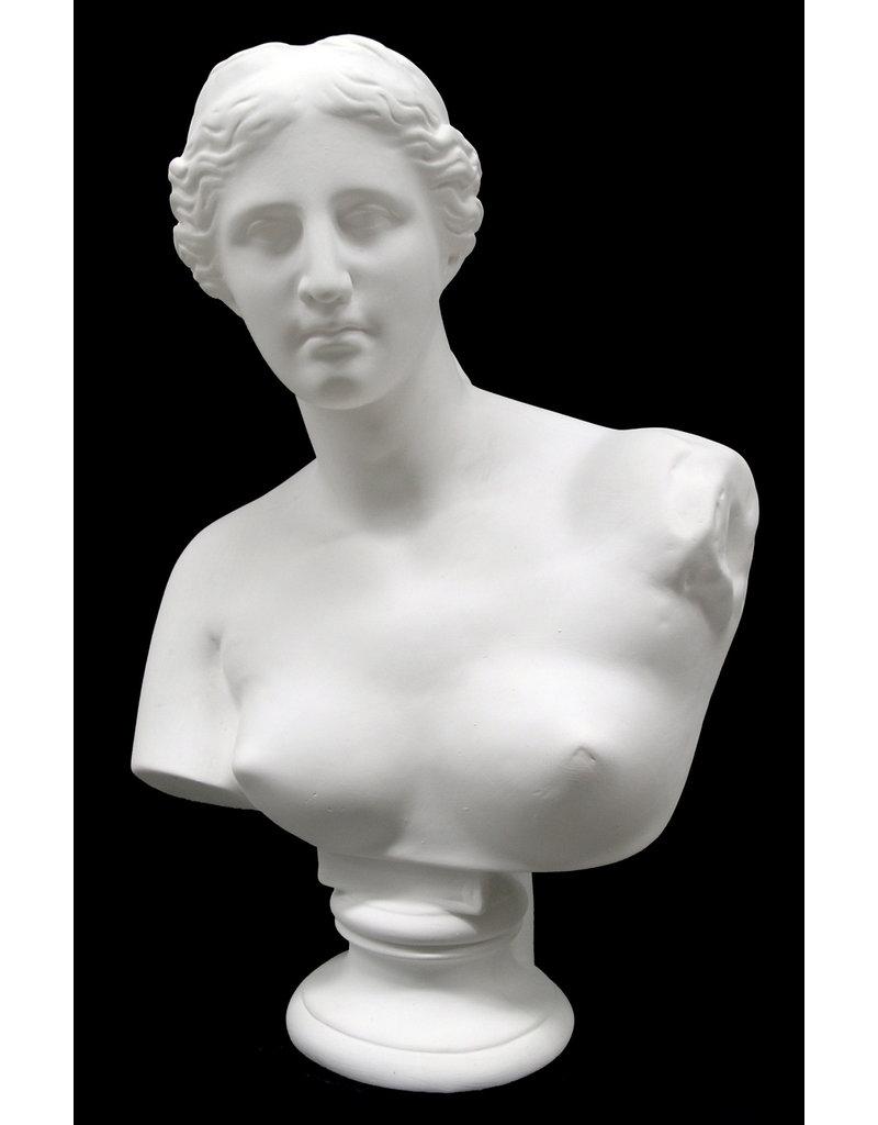 Just Sculpt Venus Plaster Bust