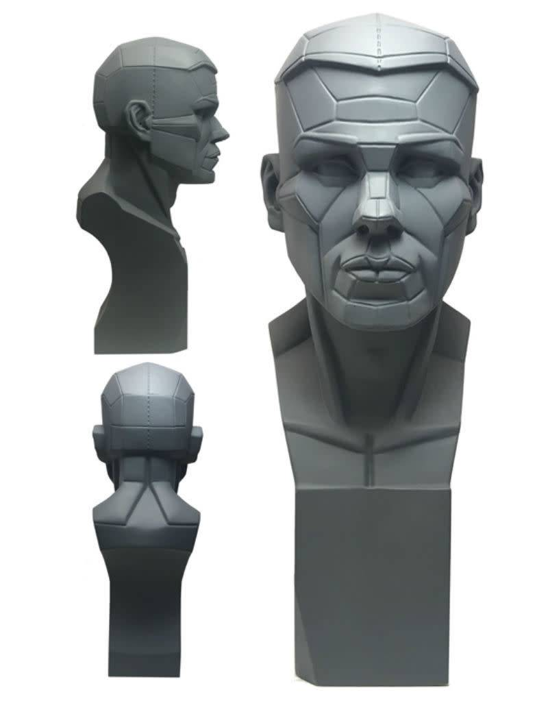 Planes of the Head Study Model Large