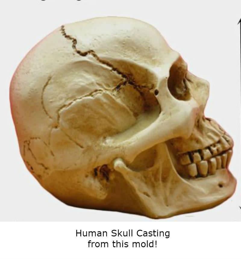 Silicone Mold Skull (1 Piece)