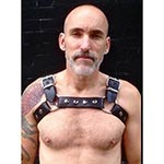 Maverick Leather Chest Harness