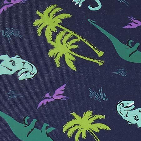 Sock It To Me Land of the Dino Underwear, Boxer