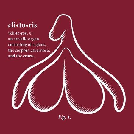 Clitoris T-shirt, Fitted Hourglass Cut