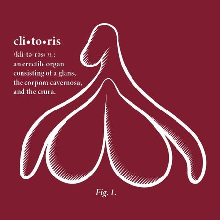 Tool Shed Clitoris T-shirt, Fitted Hourglass Cut