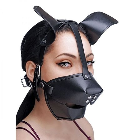 Master Series Puppy Play Hood and Breathable Ball Gag