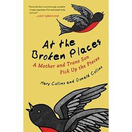 Beacon Press At the Broken Places