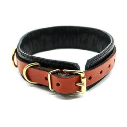 Aslan Aslan Brass and Tan Collar