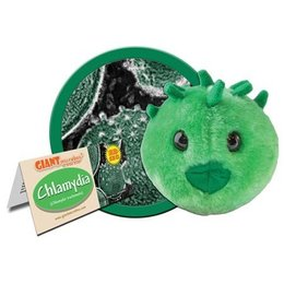 Giant Microbes, Chlamydia, Small