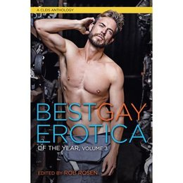 Cleis Press Best Gay Erotica of the Year, Volume 3