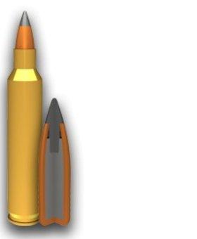 Winchester 223 40 gr varmint X