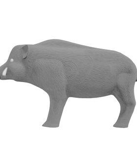 Block 3-D Hog