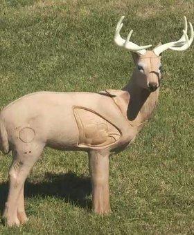 Woodland buck Special